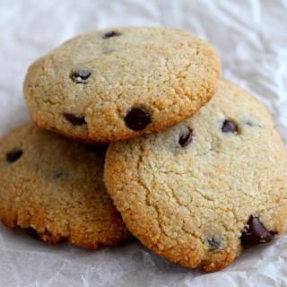 paleo chocolate chip cookies thanksforthefood.com